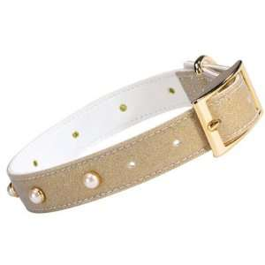 Zack & Zoey Gold Metallic Shimmering Pearl Dog Collar 6 8