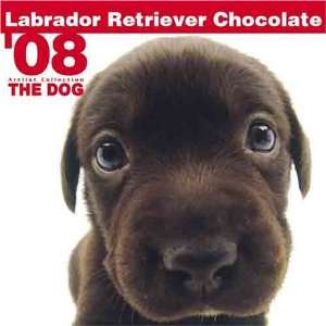 THE DOG Artlist   Chocolate Labrador Retriever 2008